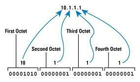 Understanding IP Addresses and Networks