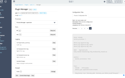 Introducing the VNS3 Plugin Manager